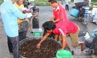 Chợ rắn, chợ cua huyện đầu nguồn