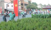 Người Sài Gòn mua cây lúa, cây ngô về nhà đón Tết
