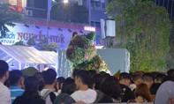 Tưng bừng đường hoa Nguyễn Huệ thời khắc cận Giao thừa