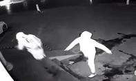 Clip tên trộm chọi nhầm gạch vào đầu đồng phạm thu hút người xem
