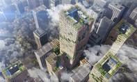 Nhật Bản lên kế hoạch xây tòa nhà cao nhất thế giới bằng gỗ