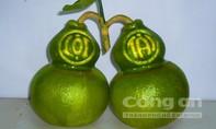 Trái cây hồ lô giá nửa triệu đồng/quả ở miền Tây