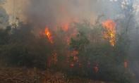 Lửa thiêu rụi hơn 40 ha rừng thông phòng hộ