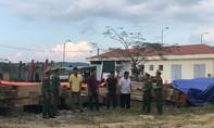 7 đối tượng phá rừng quy mô lớn tại Đắk Lắk