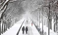 Bão tuyết bao trùm Đông Bắc nước Mỹ