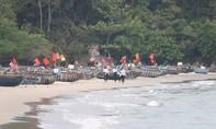 Kết luận của Chủ tịch Đà Nẵng về dự án Nam Ô