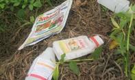 Bốn học sinh lớp 5 thách đố nhau uống thuốc trừ sâu