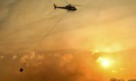 Úc: Cháy rừng diện rộng đe dọa người dân TP. Sydney