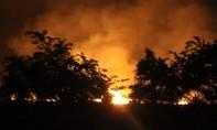 Cả trăm CBCS dập vụ cháy rừng lớn ở Sài Gòn