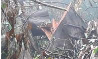 Rừng phòng hộ Kvàng bị tàn phá khủng khiếp