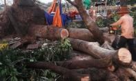 Lốc xoáy làm một người chết, hàng trăm ngôi nhà hư hỏng