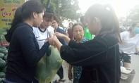 """""""Giải cứu"""" hơn 10 tấn dưa hấu giúp nông dân miền Trung"""