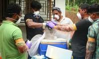 Vi rút viêm não hiếm gặp giết chết 10 người ở Ấn Độ