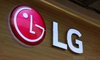 LG sản xuất màn hình tại Trung Quốc cung cấp cho iPhone mới?