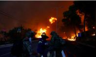 Cháy rừng dữ dội ở Hy Lạp, ít nhất 50 người chết