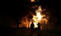 Cháy rừng, Hy Lạp sơ tán dân khỏi đảo Evia