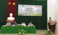 Saigon Co.op đảm bảo lợi nhuận cho nông dân vùng lúa gạo sạch