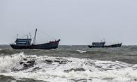 5 ngư dân trên tàu cá bị mất liên lạc gần một tháng