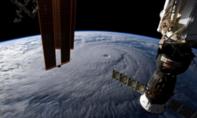 Người dân Hawaii gia cố nhà cửa đối phó siêu bão đổ bộ