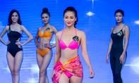 Lộ diện ứng viên sáng giá đại diện Việt Nam thi Miss Earth 2018