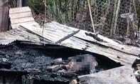 Mâu thuẫn với vợ, tưới xăng đốt nhà 2 người chết rồi đâm vợ trọng thương