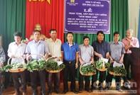 """Tặng 46.500  cây """"Quốc bảo"""" cho 7 xã vùng khó khăn của tỉnh Kon Tum"""