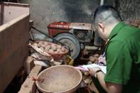 Gần 600 tấn khoai tây Trung Quốc về Đà Lạt trong một tháng