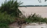 Nhiều đoạn đê bao sông Tiền và sông Cổ Chiên sạt lở nghiêm trọng