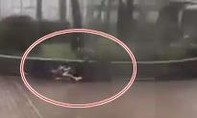 Hai cha con phải bò sát mặt đất trong siêu bão Mangkhut