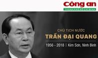 Infographic: Cuộc đời và sự nghiệp của Chủ tịch nước Trần Đại Quang
