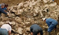 Phát hiện các khu chôn tập thể hơn 166 người ở Mexico