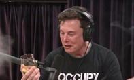 Cổ phiếu Tesla giảm vì Elon Musk hút cần sa trong chương trình trực tuyến