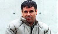 Trùm ma tuý bị tố đưa hối lộ cựu tổng thống Mexico 100 triệu USD