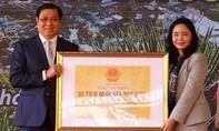 Danh thắng Ngũ Hành Sơn nhận Bằng Di tích quốc gia đặc biệt
