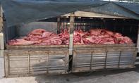 Tiếp tục phát hiện hơn 1 tấn thịt heo nhiễm bệnh tại chợ Bình Điền