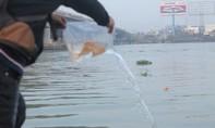 Nhiều gia đình thả cá chép tiễn Táo quân từ sáng sớm