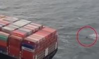 Clip thuyền chở người di cư suýt bị tàu hàng đâm, thoát chết trong gang tấc