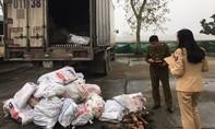 Xe tải chở 1.000kg thịt bốc mùi vào Sài Gòn