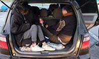 Đức bắt 17 người Việt nhập cư trái phép từ Đông Âu trên 3 ô tô