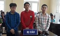 Nhóm thanh niên chuyên nghề trộm cướp lãnh án