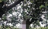Phát hiện thi thể nghi là người cha sát hại 2 con ở Bà Rịa - Vũng Tàu