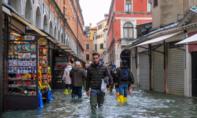 Venice ngập nặng: Hồi chuông cảnh báo về biến đổi khí hậu