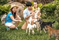 Vinpearl Safari đăng cai hội nghị bảo tồn và phúc trạng động vật