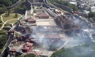Người dân Nhật góp tiền xây lại lâu đài 600 tuổi bị thiêu rụi