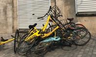 Công ty khởi nghiệp Trung Quốc mất hơn 200.000 xe đạp/năm vì trộm