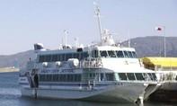 Tàu cao tốc va phải cá voi, ít nhất 80 người bị thương