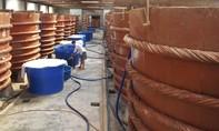 Nhiều DN sản xuất nước mắm truyền thống phản đối