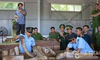 Bắt gần chục tấn ngà voi đưa từ châu Phi về Việt Nam