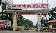 Bắt 5 cựu lãnh đạo liên quan sai phạm tại Công ty Gang thép Thái Nguyên