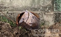 Vụ 300 thai nhi trong rác ở Cà Mau: Kiểm tra, phát hiện 7 hũ nghi đựng xác thai nhi